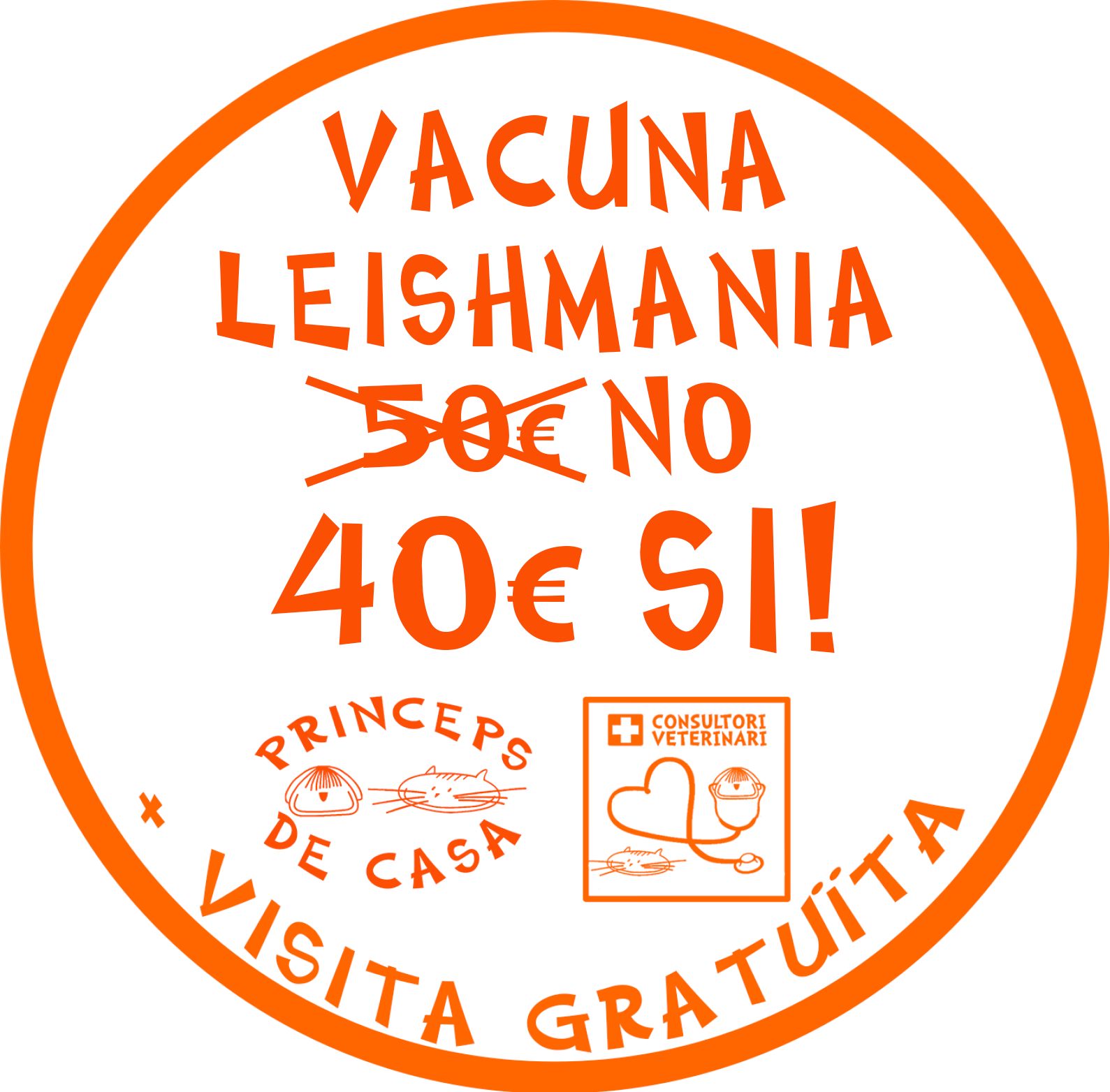 vacuna leishmania barcelona english speaking vet